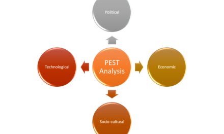 Using the PEST Analysis
